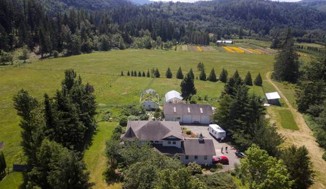 290 Colter Road, Columbia Valley, BC V2R 5B8 (#R2429894) :: RE/MAX City Realty