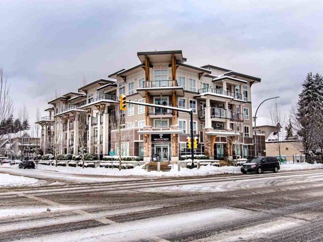 12409 Harris Road #310, Pitt Meadows, BC V3Y 0E7 (#R2430210) :: RE/MAX City Realty