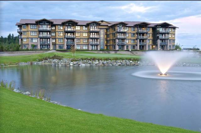 5055 Springs Boulevard #205, Tsawwassen, BC V4M 0A5 (#R2431052) :: RE/MAX City Realty