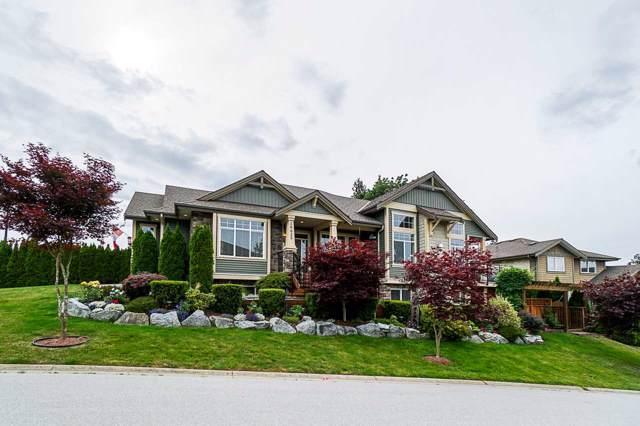 10625 239 Street, Maple Ridge, BC V2W 1X1 (#R2431405) :: RE/MAX City Realty