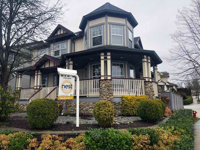 10028 240 Street, Maple Ridge, BC V2W 1Z9 (#R2431803) :: RE/MAX City Realty