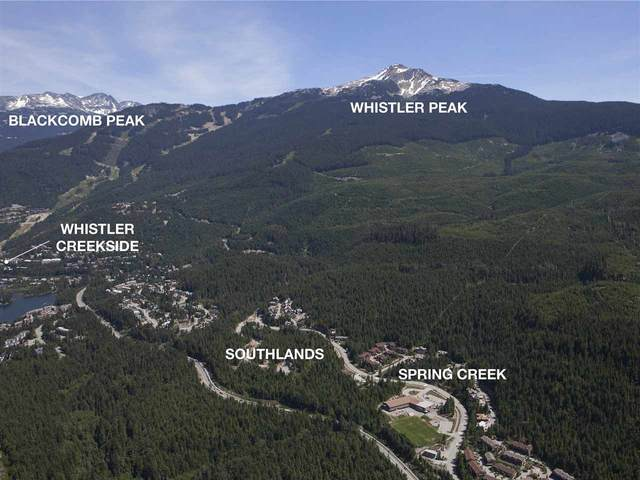 1620 Southlands Lane, Whistler, BC V0N 1B1 (#R2436503) :: Homes Fraser Valley