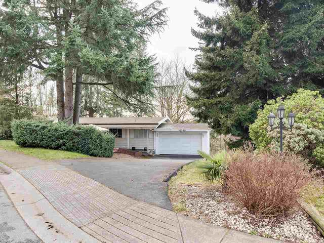 10590 Santa Monica Drive, Delta, BC V4C 1P7 (#R2436811) :: Homes Fraser Valley