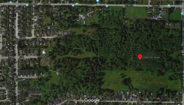 12685 232ND Street, Maple Ridge, BC V4R 0C7 (#R2437274) :: Premiere Property Marketing Team