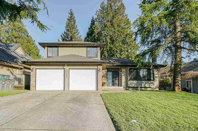 10462 Fraserglen Drive, Surrey, BC V4N 1T5 (#R2437866) :: RE/MAX City Realty