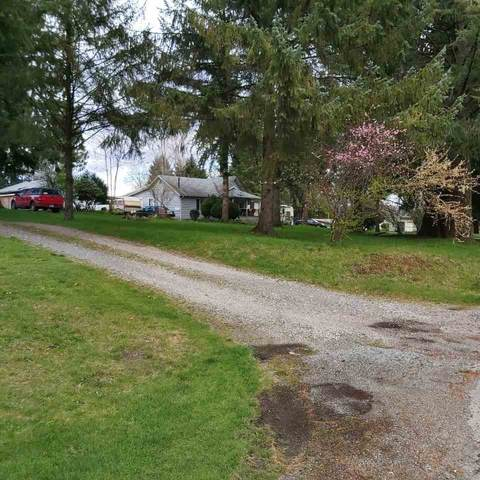 18889 92 Avenue, Surrey, BC V4N 3Z4 (#R2448597) :: 604 Realty Group