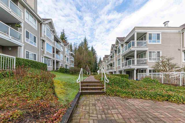 3033 Terravista Place #211, Port Moody, BC V3H 5A3 (#R2449004) :: 604 Realty Group