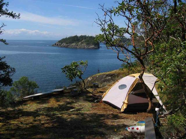 LOT 7 East Trail Island, Sechelt, BC V0N 3A0 (#R2454519) :: RE/MAX City Realty