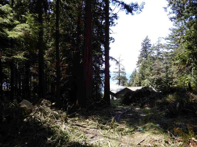 Lot 3 Forin Road, Keats Island, BC V0N 1V0 (#R2459870) :: 604 Realty Group