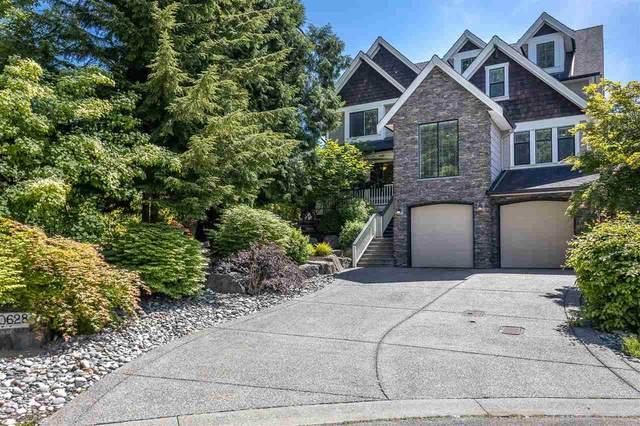 20628 98 Avenue, Langley, BC V1M 2H6 (#R2460466) :: Premiere Property Marketing Team