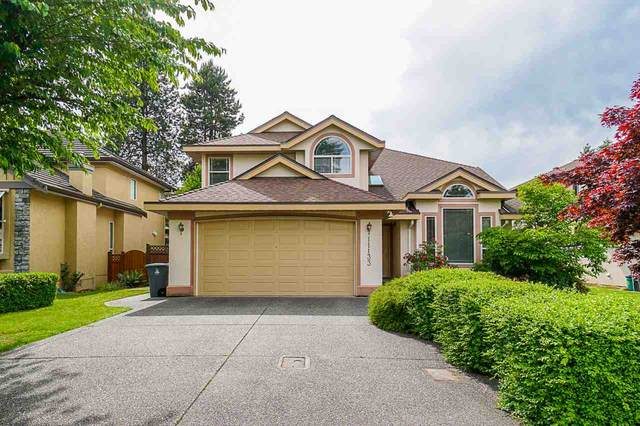 11133 160A Street, Surrey, BC V4N 4Z2 (#R2460979) :: Premiere Property Marketing Team
