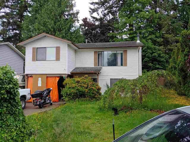 3282 Cheam Avenue, Abbotsford, BC V2T 4Y8 (#R2461729) :: Premiere Property Marketing Team