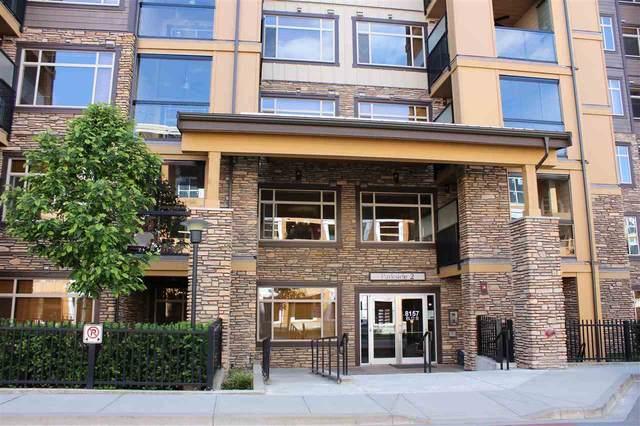 8157 207 Street #302, Langley, BC V2Y 0V4 (#R2462326) :: Premiere Property Marketing Team