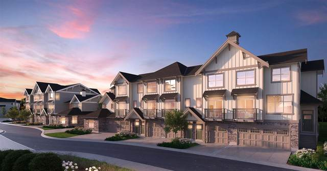 20486 65 Avenue #87, Langley, BC V0V 0V0 (#R2462499) :: Premiere Property Marketing Team