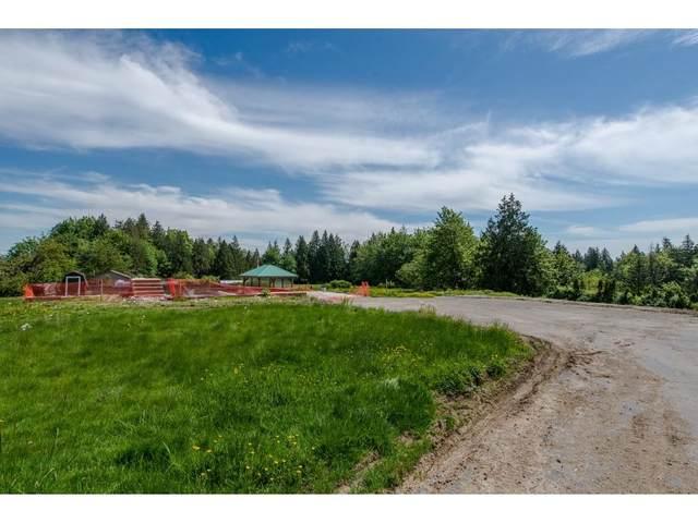 7788 Ross Road, Abbotsford, BC V4X 2B5 (#R2465890) :: 604 Realty Group