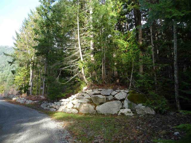 In-Shuck-Ch Forest Road #45, Pemberton, BC V0N 2L0 (#R2471928) :: 604 Realty Group