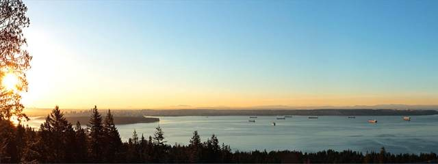 2756 Rodgers Creek Place, West Vancouver, BC V7S 0A7 (#R2473817) :: Initia Real Estate