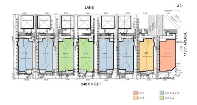 11002 240 ST Street, Maple Ridge, BC V2W 1H7 (#R2474004) :: RE/MAX City Realty