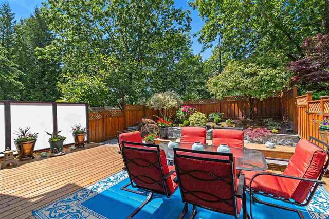8227 Vivaldi Place, Vancouver, BC V5S 4G6 (#R2479480) :: 604 Realty Group