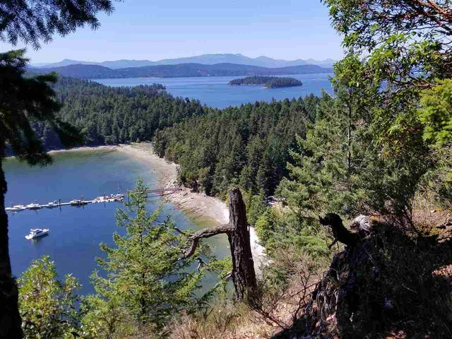 LOT 3 Porlier Pass Road, Galiano Island, BC V0N 1P0 (#R2484481) :: Ben D'Ovidio Personal Real Estate Corporation | Sutton Centre Realty