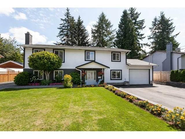 3952 205B Street, Langley, BC V3A 2B3 (#R2486074) :: Homes Fraser Valley