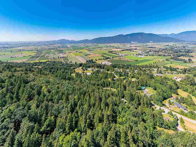 41768 Bowman Road, Chilliwack, BC V2R 5G8 (#R2486157) :: 604 Home Group