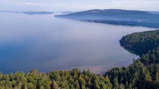 128 Narrows West Road Lot 2, Salt Spring Island, BC V8K 2N1 (#R2488053) :: Ben D'Ovidio Personal Real Estate Corporation | Sutton Centre Realty