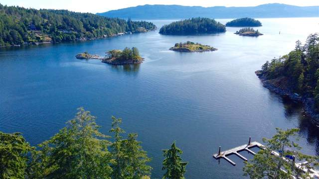 Lot 25 Pinehaven Way, Pender Harbour, BC V0N 1S1 (#R2491409) :: RE/MAX City Realty