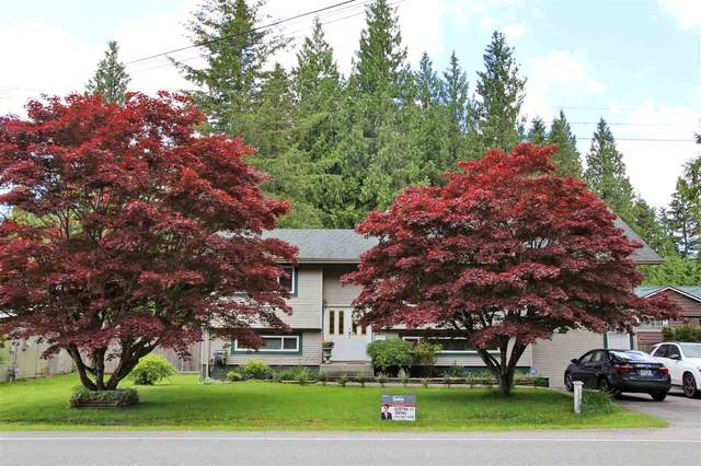 12857 248 Street, Maple Ridge, BC V4R 1K6 (#R2493122) :: 604 Realty Group