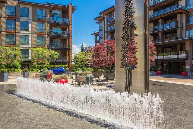 719 W 3RD Street #208, North Vancouver, BC V7M 0E7 (#R2493570) :: Homes Fraser Valley
