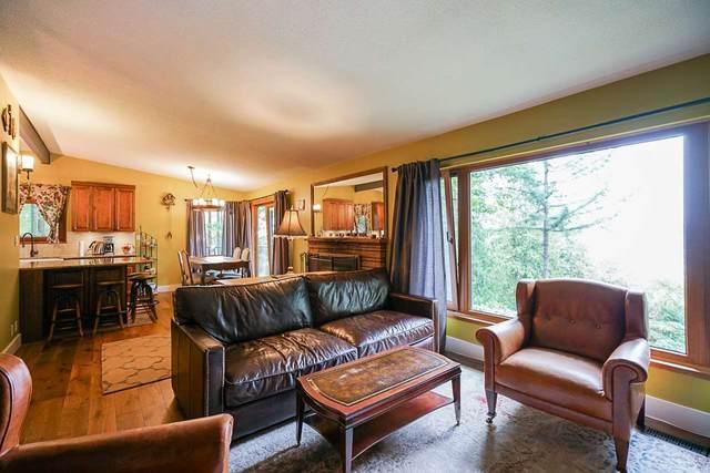 10725 127 Street, Surrey, BC V3V 5K5 (#R2495028) :: Premiere Property Marketing Team