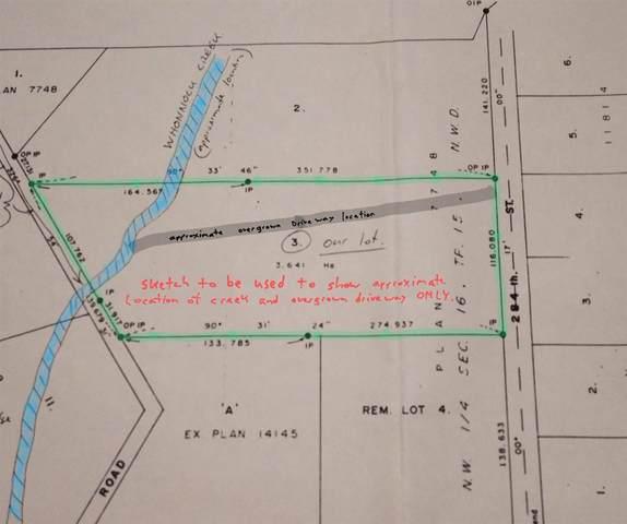 11707 284 Street, Maple Ridge, BC V2W 1L9 (#R2495501) :: Initia Real Estate