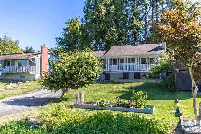 11336 Melville Street, Maple Ridge, BC V2X 1P6 (#R2495503) :: Ben D'Ovidio Personal Real Estate Corporation   Sutton Centre Realty