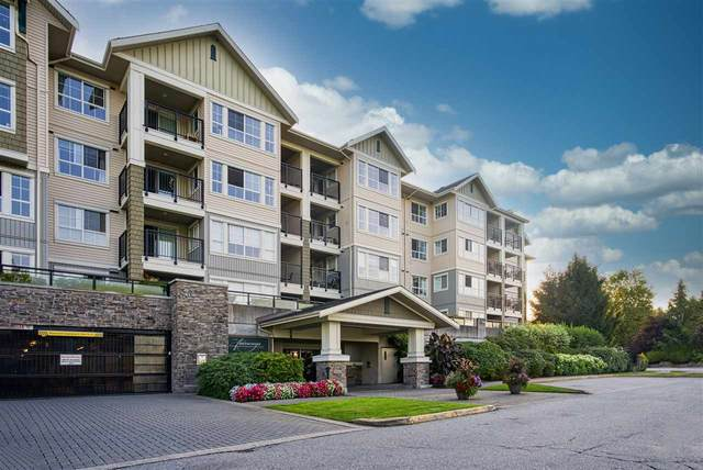19673 Meadow Gardens Way #209, Pitt Meadows, BC V3Y 0A1 (#R2496711) :: 604 Realty Group