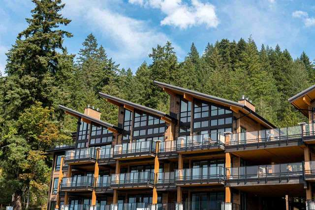 3175 Columbia Valley Road #104, Cultus Lake, BC V2R 6C2 (#R2497089) :: Homes Fraser Valley