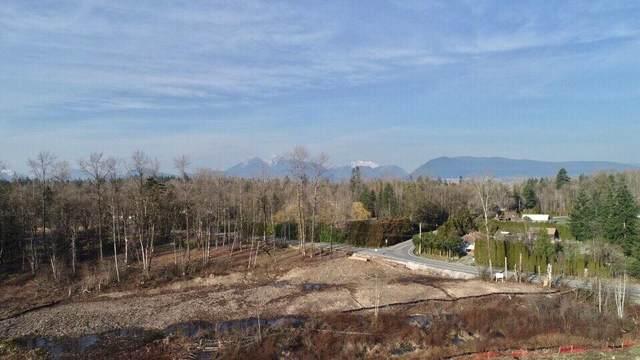 9857 Mckinnon Lot 2 Crescent, Langley, BC V1M 3V6 (#R2497724) :: 604 Realty Group