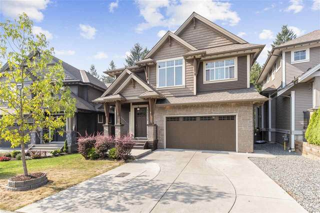 11071 Buckerfield Drive, Maple Ridge, BC V2W 1Z8 (#R2498589) :: Ben D'Ovidio Personal Real Estate Corporation   Sutton Centre Realty