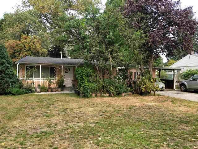 14571 106 Avenue, Surrey, BC V3R 1S9 (#R2498678) :: Premiere Property Marketing Team