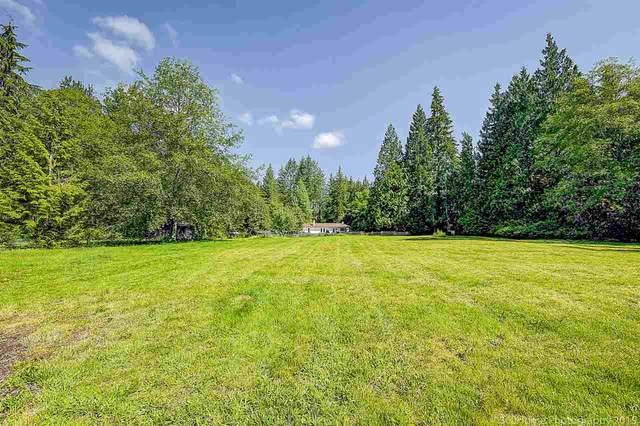 27970 110 Avenue, Maple Ridge, BC V2W 1P6 (#R2498720) :: Initia Real Estate