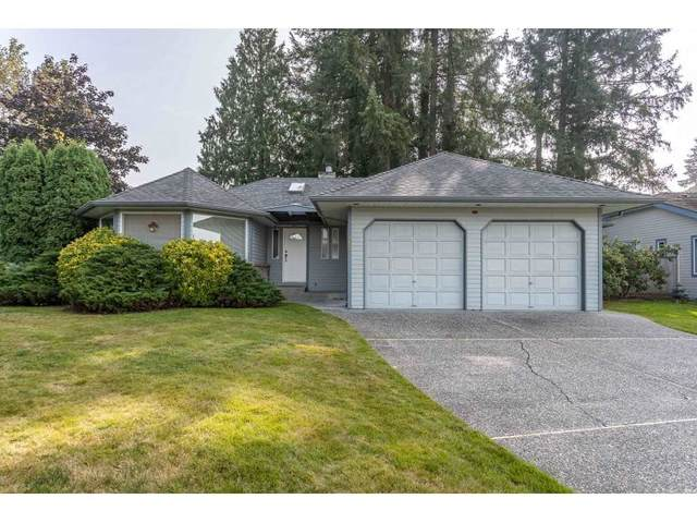 20486 123B Avenue, Maple Ridge, BC V2X 0A1 (#R2498741) :: Premiere Property Marketing Team