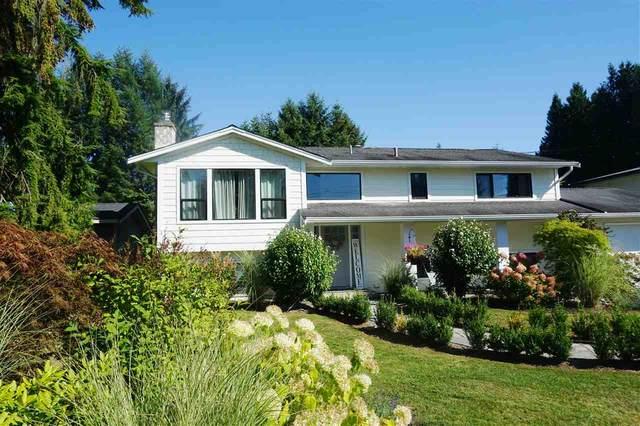 9138 Gay Street, Langley, BC V1M 2S3 (#R2498880) :: 604 Realty Group