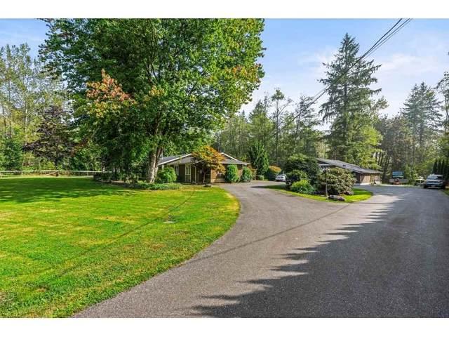 27720 Joanita Place, Abbotsford, BC V4X 2C3 (#R2499127) :: Ben D'Ovidio Personal Real Estate Corporation | Sutton Centre Realty