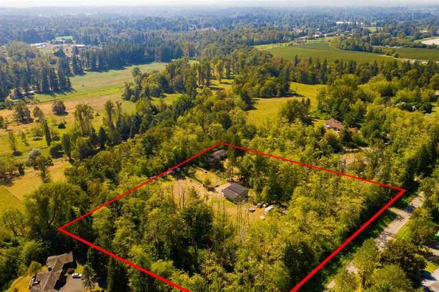 24616 21B Avenue, Langley, BC V2Z 1J3 (#R2499215) :: Ben D'Ovidio Personal Real Estate Corporation | Sutton Centre Realty
