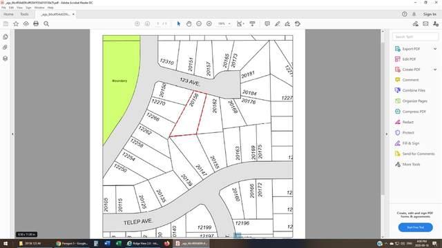 20156 123 Avenue, Maple Ridge, BC V2X 6A7 (#R2499880) :: Premiere Property Marketing Team