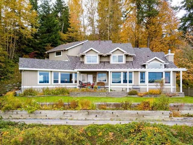 13544 56 Avenue, Surrey, BC V3X 2Z6 (#R2501192) :: Ben D'Ovidio Personal Real Estate Corporation | Sutton Centre Realty