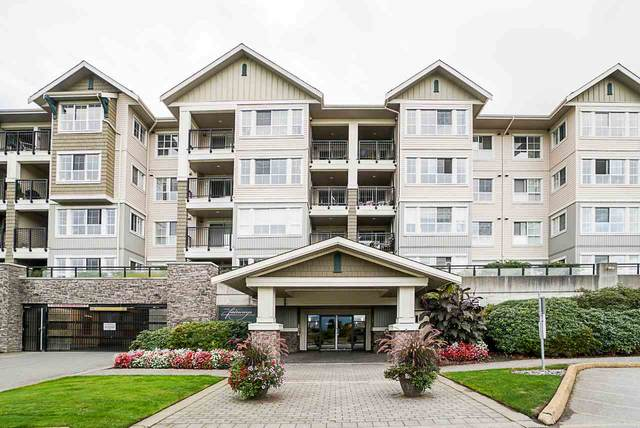 19673 Meadow Gardens Way #114, Pitt Meadows, BC V3Y 0A1 (#R2501201) :: 604 Realty Group