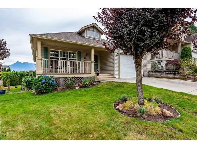 43875 Chilliwack Mountain Road #9, Chilliwack, BC V2R 5R6 (#R2501356) :: Ben D'Ovidio Personal Real Estate Corporation | Sutton Centre Realty