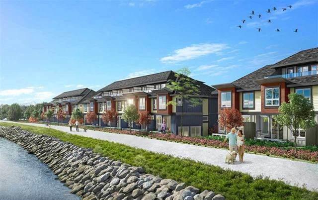 10311 River Drive #82, Richmond, BC V6X 1Z2 (#R2501365) :: Ben D'Ovidio Personal Real Estate Corporation | Sutton Centre Realty