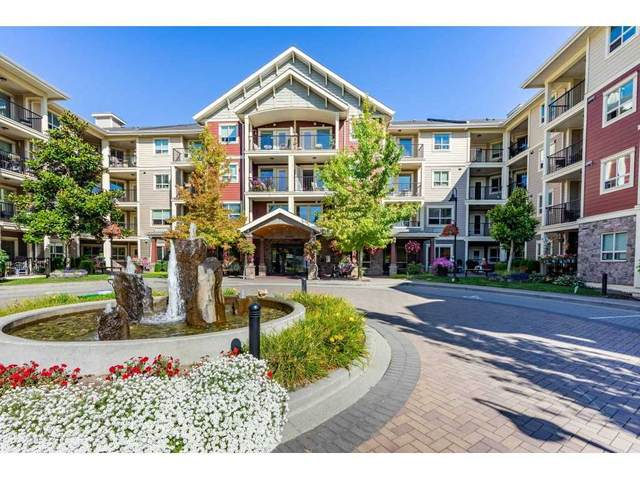 22323 48 Avenue #326, Langley, BC V3A 0C1 (#R2501456) :: Ben D'Ovidio Personal Real Estate Corporation | Sutton Centre Realty