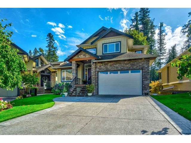 14500 Morris Valley Road #53, Mission, BC V0M 1A1 (#R2501538) :: 604 Home Group
